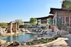 $12,000,000 Scottsdale Mansion up for Auction – Auction to be held by Grande Estates Auction Company No Reserve Price No Minimum Bids!