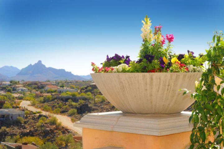 Fountain Hills, AZ 85268 14