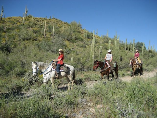 Cave Creek Horse ride
