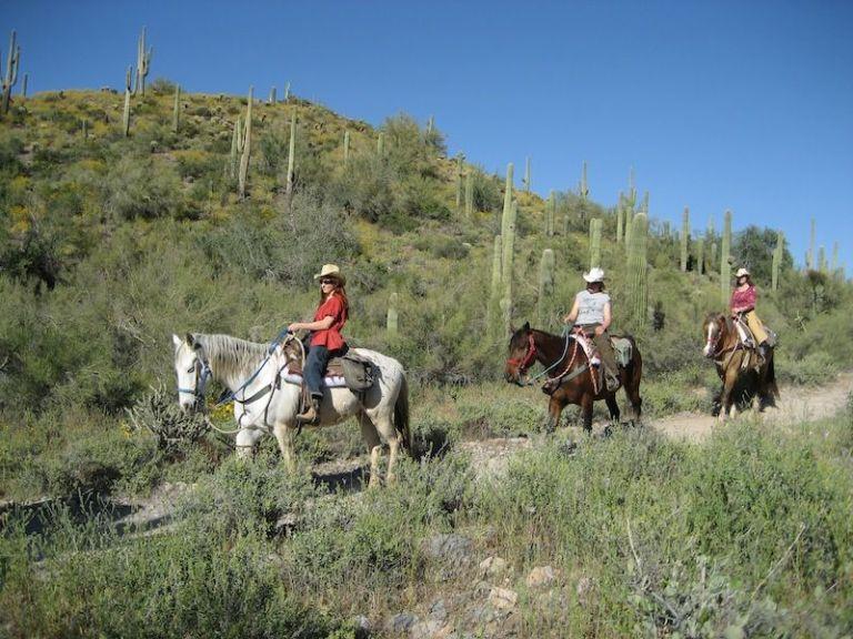 Cave Creek Horse ride