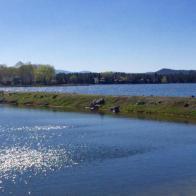 Luxury waterfront estate on Rainbow Lake 11